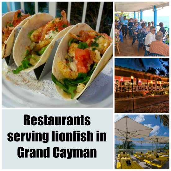 Restaurants that serve lionfish in Grand Cayman