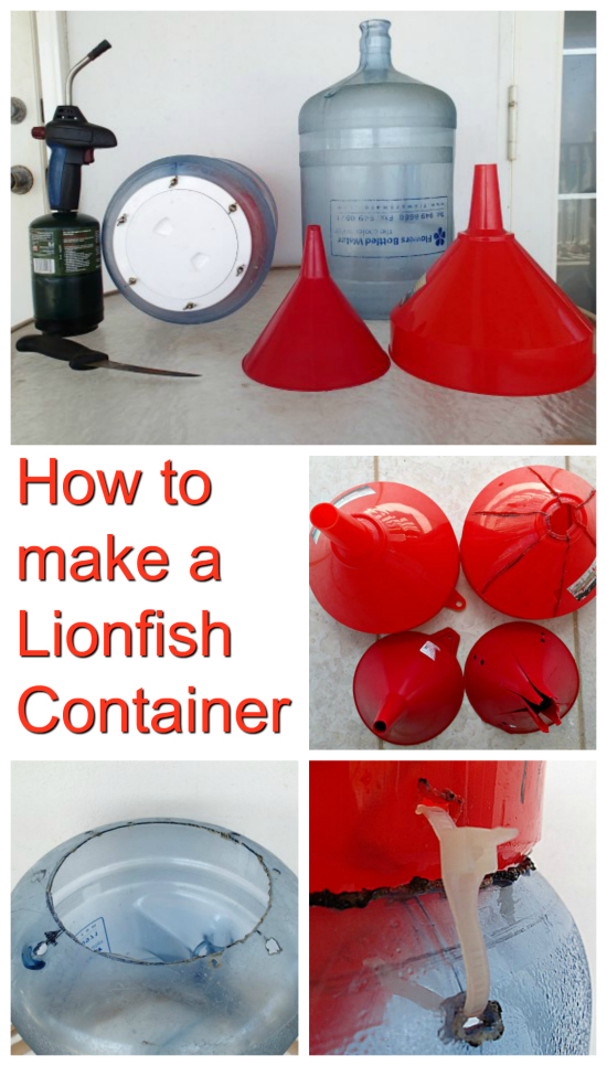 If you want to catch your own lionfish, then here are instructions, including a video, on how to make your own cheap Lionfish Container.