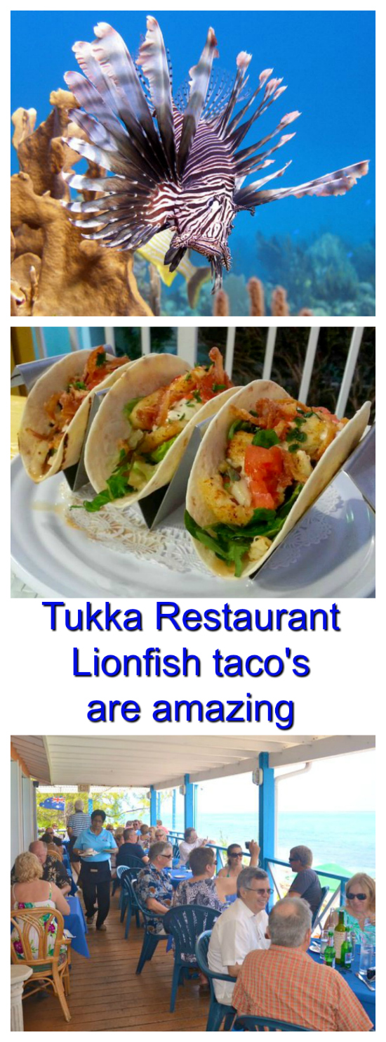 If you want some amazingly delicious lionfish taco's then Tukka Restaurant on the East End of Grand Cayman is the place to find them. And I provide them with some of their freshly caught lionfish.