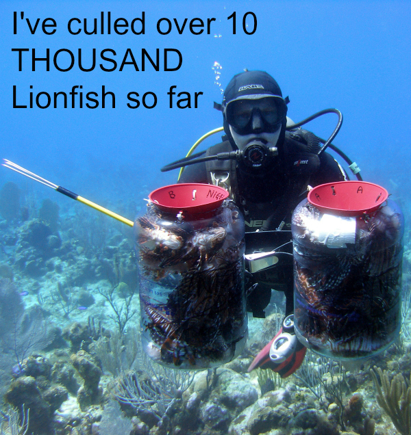 I've culled over 10 THOUSAND lionfish meaning one of the most important things to eat this INVASIVE fish is Caymanians!